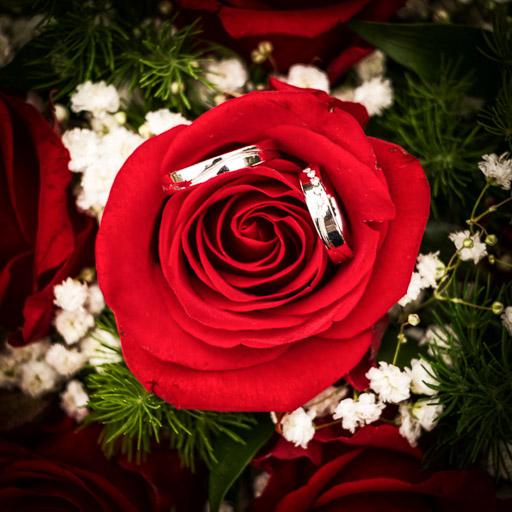 Kepek-eskuvod-utan-rozsa-menyasszonyi-csokor